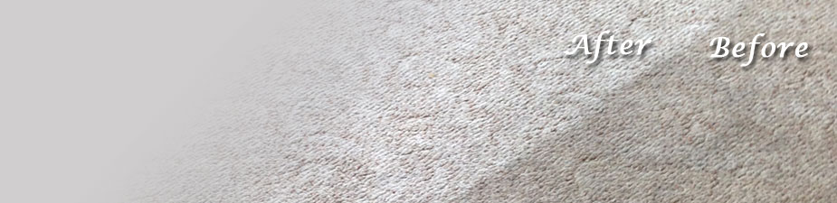 Bob's Steam Carpet Cleaning leaves carpets visibly cleaner.